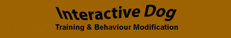 Dog Training & Behaviour Modification